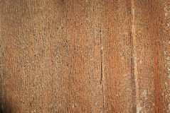 Old wood background drop shadow soft ligh.  Royalty Free Stock Photo