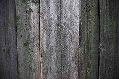 Old wood background. Fence with green paint peeling off Stock Photography