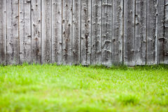 Old wood background with fresh green grass Royalty Free Stock Photography