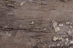 Old wood background texture Royalty Free Stock Photo