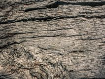 Old wood background texture. An old wood background texture Royalty Free Stock Photos