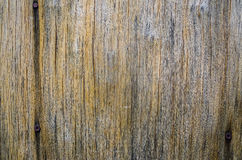 Old wood background. Old wood texture of the outdoor stump Royalty Free Stock Photography