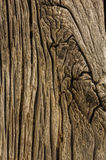 Old wood background. Used for text and image Royalty Free Stock Images