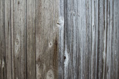 Old wood Background. Old wooden door. Not painted Royalty Free Stock Image