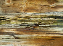 Old wood background. Stock Image