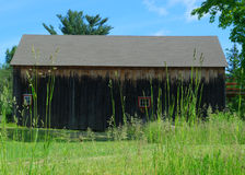 Old wood barn on an early, sunny summer day behind tall grasses. Green blue sky trees field red window Royalty Free Stock Photography