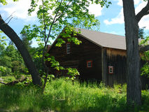 Old wood barn set between two trees. Red trim Windows brown blue royalty free stock photo