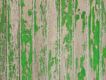 Old wood board painted green Royalty Free Stock Image