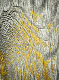 Old wood board with peeled yellow paint Royalty Free Stock Photo