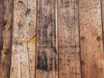 Old wood board with some mold spots. Old rustic wood with mold or fungal on top background texture royalty free stock photos