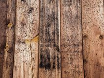 Old wood board with some mold spots. Old rustic wood with mold or fungal on top background texture royalty free stock image