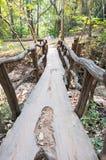 Old Wood Bridge. Building in the Garden Stock Image