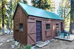 Old wood cabin in a pine tree forest Royalty Free Stock Photos