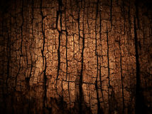Old wood cracked texture Stock Images