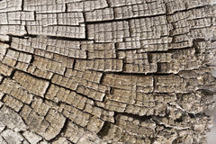 Old wood with cracks and cracked wood board. Royalty Free Stock Photography