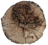 Old wood cut texture Royalty Free Stock Images