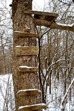 Old wood deer stand in the  woods Stock Photography