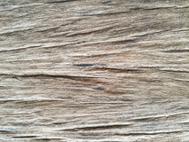 Old wood in demonstrated a clear wood Royalty Free Stock Image