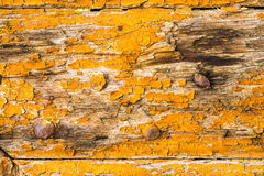 Old wood, detail Stock Photo