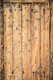 Old wood door background Royalty Free Stock Images