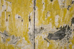 Old wood door Stock Image