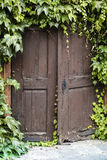 Old wood door with ivy Stock Photos
