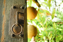 An old wood door with metal handle Stock Photography
