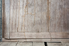Old Wood Door with Termite Stock Photography