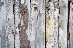Old wood fence Stock Images