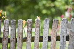 Old wood fence. With freen background Stock Images