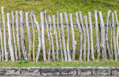 Old wood fence in green field, countryside in New Zealand. Stock Photos