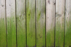 Old wood fence Royalty Free Stock Images