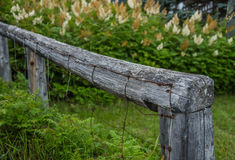 Old wood fence with rusted metal wire and flowers. Weathered hitching post on farm outside with ferns and astilbe flowers Royalty Free Stock Photos