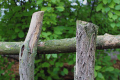 Old wood fence. With trees in background Royalty Free Stock Image