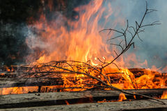 Old wood fire. A fire burns in a fireplace Stock Image