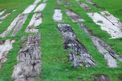 Old wood floor on green grass for background. Old wood floor on green grass in the park Royalty Free Stock Photography