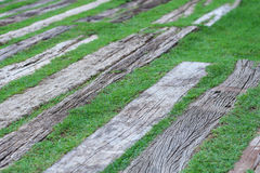 Old wood floor on green grass for background. Old wood floor on green grass in the park Royalty Free Stock Photos