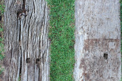 Old wood floor on green grass for background. Old wood floor on green grass in the park Stock Photo
