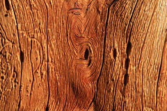 old wood grain Royalty Free Stock Photo