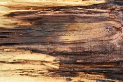 Wood background. Old Wood grain surface background Stock Images