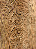Old wood grain texture Royalty Free Stock Photography