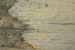 Old wood grunge background Stock Images