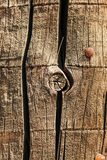 Old wood with hobnails closeup Royalty Free Stock Photos