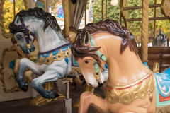 Old wood horses on an carousel Stock Images