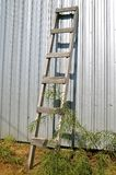 Old wood ladder leans against steel building Royalty Free Stock Photography