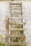 Old wood ladder on stucco wall Royalty Free Stock Image