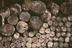 Old wood log firewood forestry logging tree vintage. Color tone royalty free stock photo