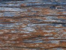 Old wood. More colours on surface old wood stock images