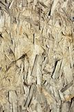 Old wood panel Oriented strand board. Old wood panel OSB royalty free stock photo