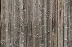 Old wood panels Stock Image